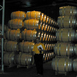 man speaking with wine barrels